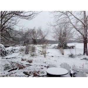 Winter Wonderland STAMPED-1000x1000