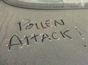 pollen, allergies