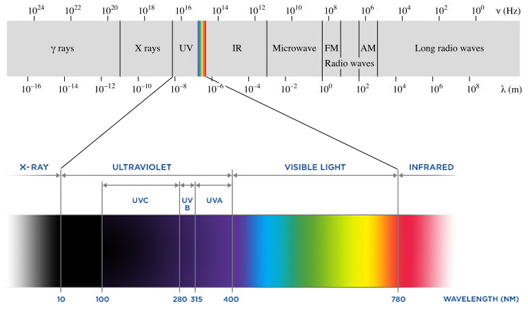a uv light experiment to determine the effects of ultraviolet light on a cell The effects of ultra-violet light (you will need to determine explain to students that they will be designing experiments to test the effects of uv light.