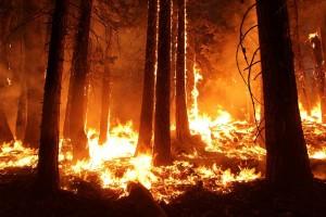 fire, california, drought