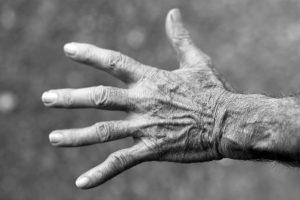 hand, bones, human, science, biology