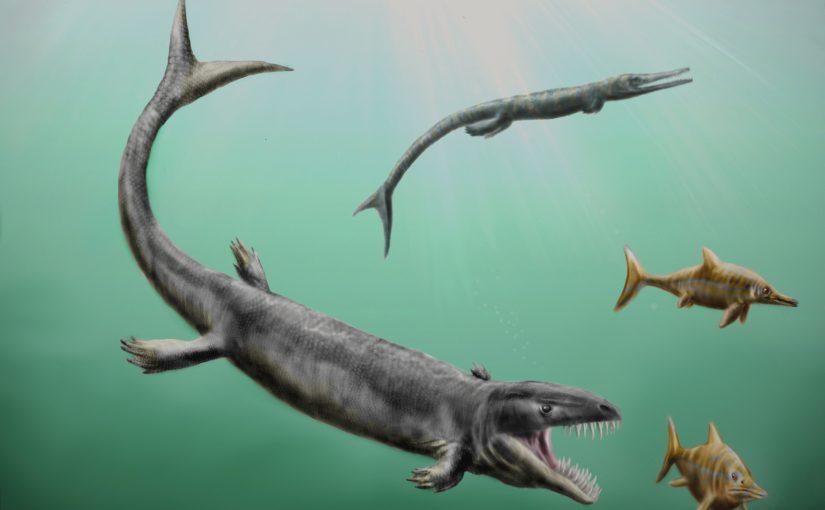 Ichthyosaurs, Ichthyosaur, dinosaur, history, fossil
