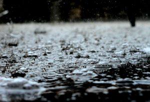 rain, water