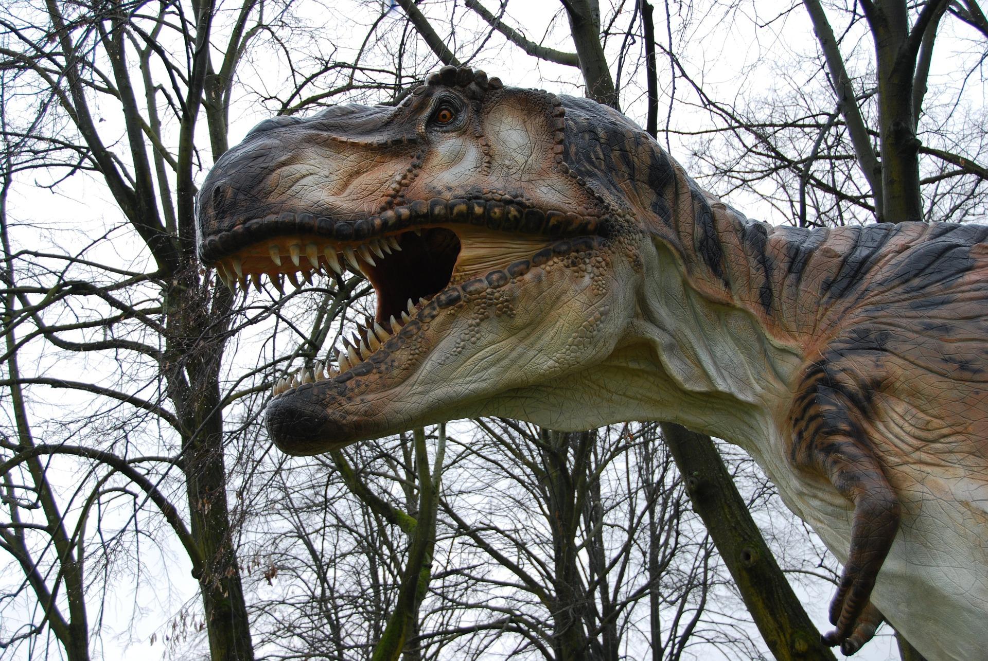 t-rex, dinosaurs, science