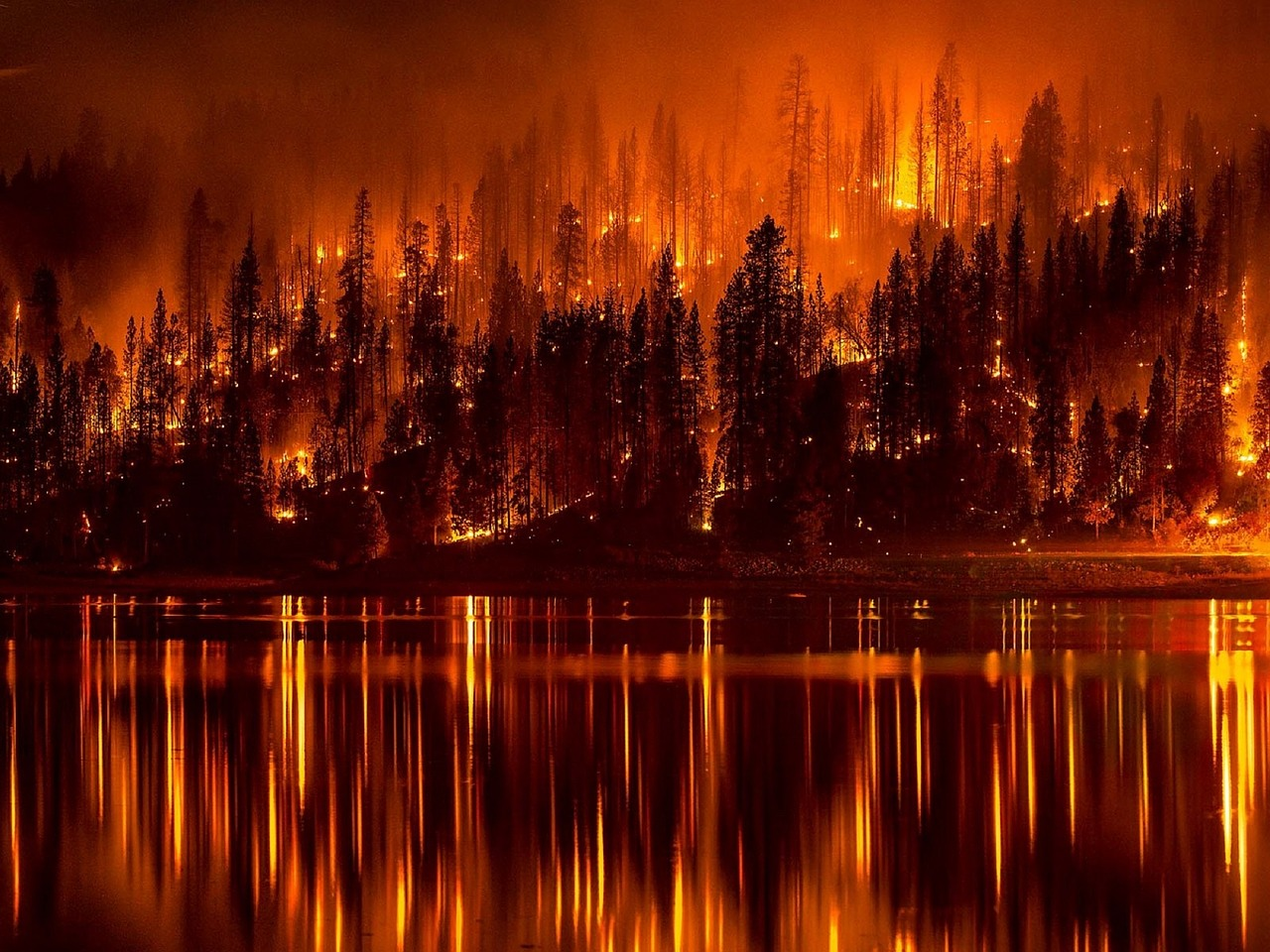fire, wildfire, california, drought