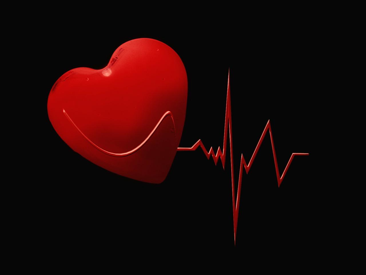 heart, cardio, heart health, health
