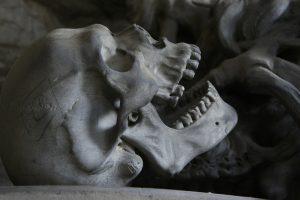 skull, death, life, weird