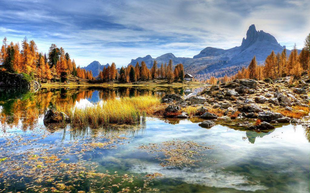 lake, water, environment