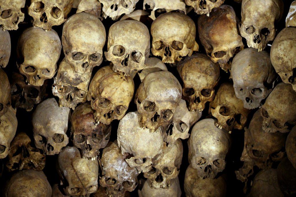 bones, skeletons