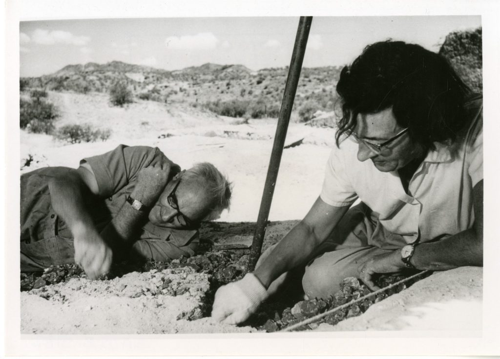 mary leakey, louis leakey, palaeontology,