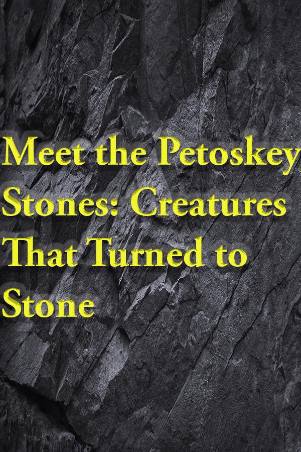 Petoskey Stone, geology, paleontology, Michigan stones